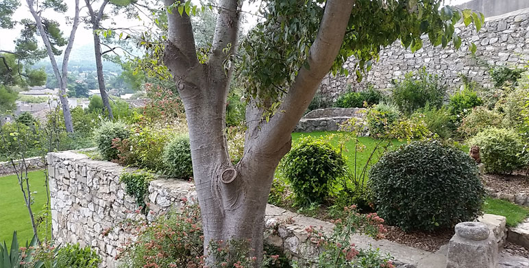 Jardin sur restanques eygali res architecte paysagiste - Creation jardin mediterraneen saint paul ...