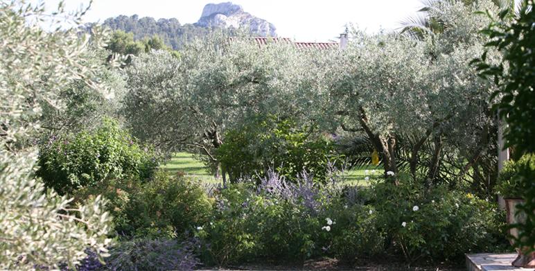 Jardin priv saint r my de provence 13 architecte paysagiste thomas gentilini cr ation et - Recuperar jardin aixen provence ...