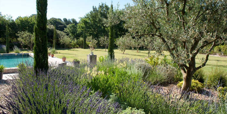 Jardin priv proven al saint cannat 13 architecte for Creation jardin provencal