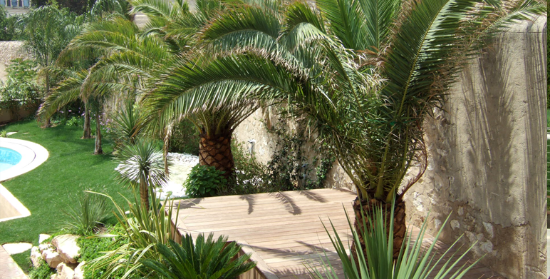 Jardin contemporain sur les hauteurs de marseille for Paysagiste creation jardin
