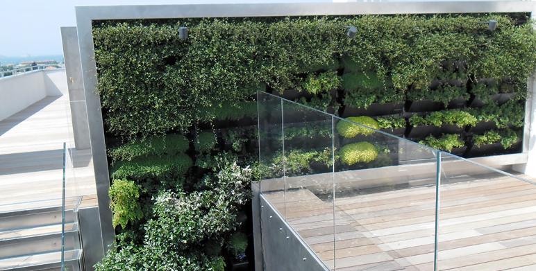 mur v g tal marseille architecte paysagiste thomas gentilini cr ation et am nagement jardin. Black Bedroom Furniture Sets. Home Design Ideas