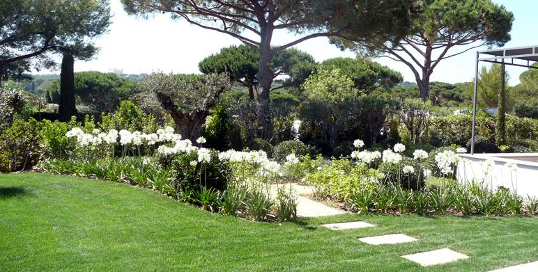 Jardin fleurs blanches petite fleur blanche bouquet | Vap vap