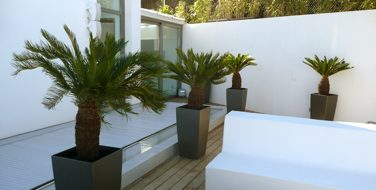 Jardin contemporain avec terrasses roucas blanc marseille architecte paysagiste thomas - Terrasse jardin londrina quadra marseille ...
