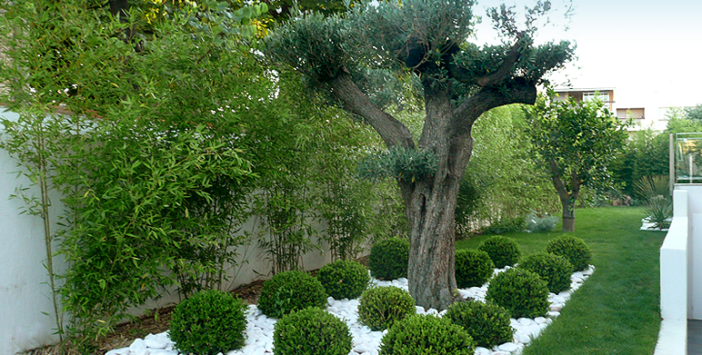 Jardin Contemporain D Acclimatation Marseille Architecte